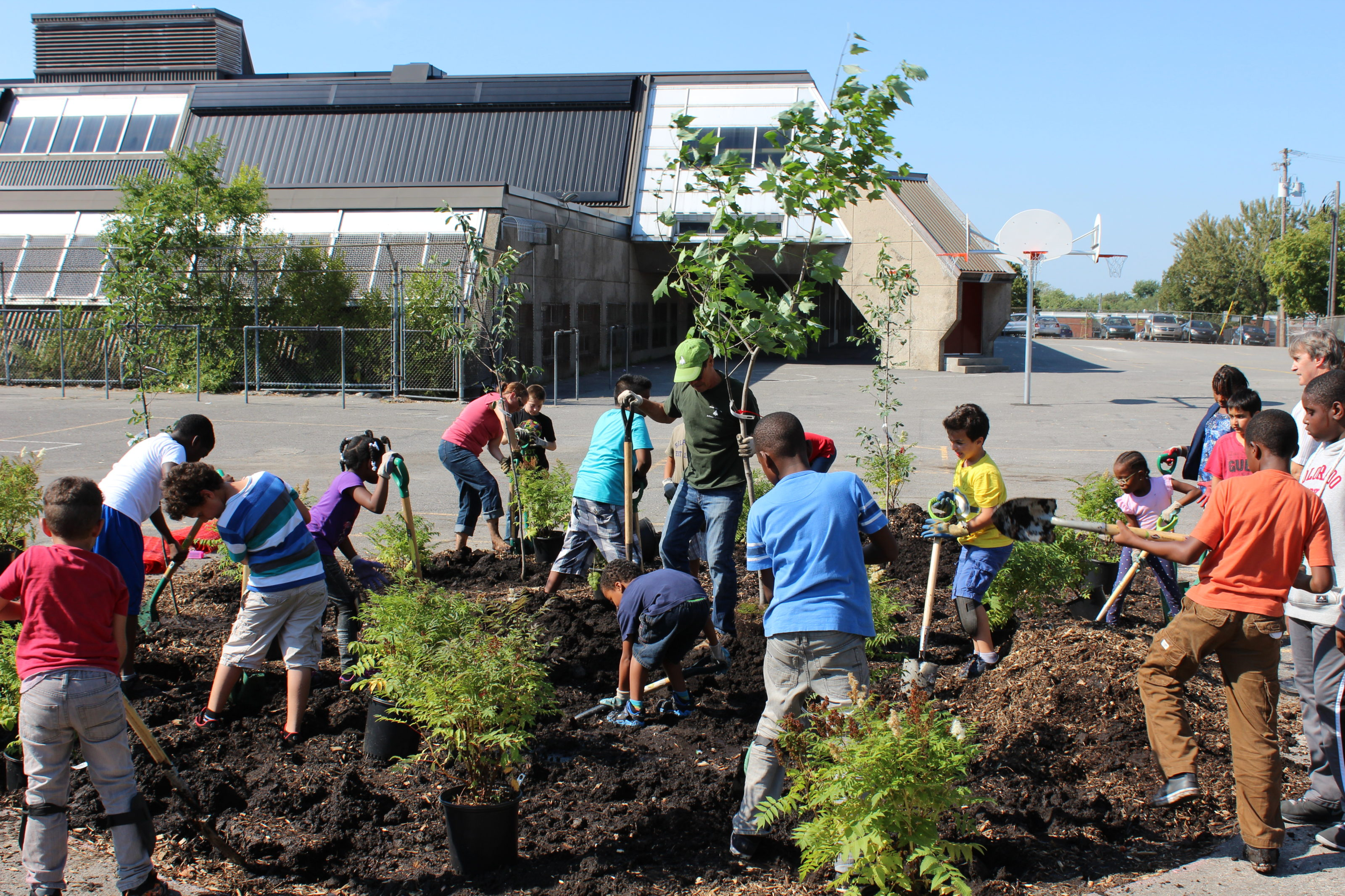 Greening Canadas School Grounds 1